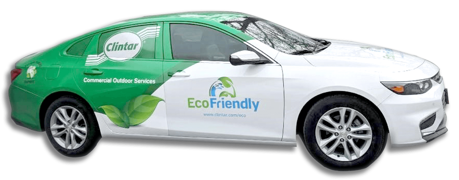 Clintar Eco Friendly Service