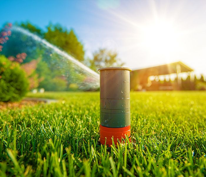 Eco-Friendly Water Savings Tips For Your Commercial Property's Landscape