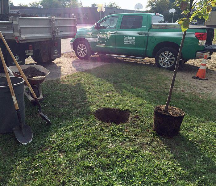Eco-Friendly Landscaping Techniques
