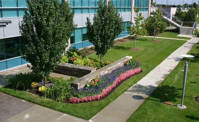 Clintar Commercial Landscaping